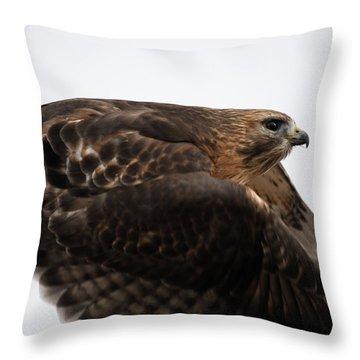 Hybrid Hawk Flyby  Throw Pillow
