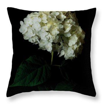 Hydrangea 1 Throw Pillow