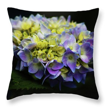 Hydrangea 3705 H_2 Throw Pillow