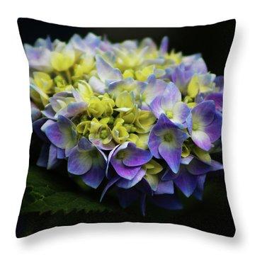 Hydrangea 3705 H_2 Throw Pillow