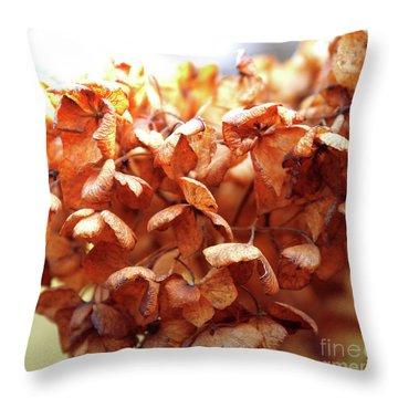 Hydrangea In Sunlight Throw Pillow