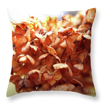 Hydrangea In Sunlight Throw Pillow
