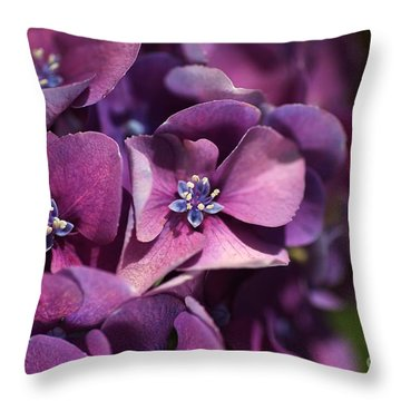 Hydrangea Passion  Throw Pillow