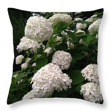 Throw Pillow featuring the photograph Hydrangeas by Ferrel Cordle