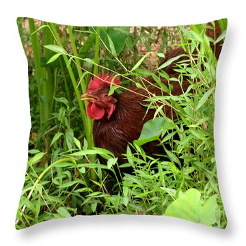 Throw Pillow featuring the photograph I Am Coming by Donna Brown