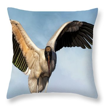 I Am The Great, And Powerful Oz Throw Pillow by Cyndy Doty
