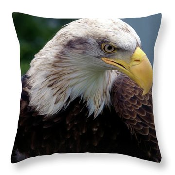 Lethal Weapon  Throw Pillow by Stephen Melia