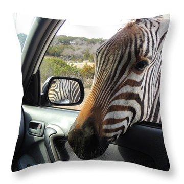 I Brake For Wildlife Throw Pillow