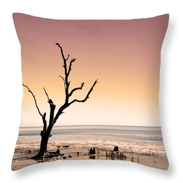 Throw Pillow featuring the photograph I Can Be Free by Dana DiPasquale