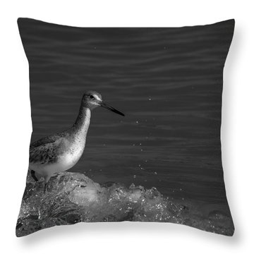 I Can Make It - Bw Throw Pillow