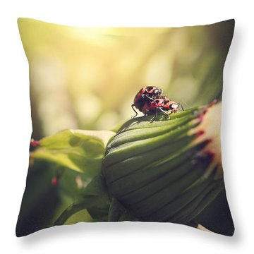 I Do Throw Pillow
