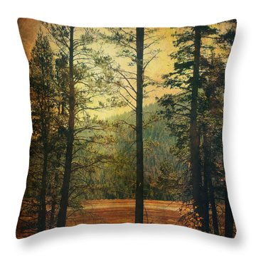 I Don't Know What To Believe In Throw Pillow by Laurie Search