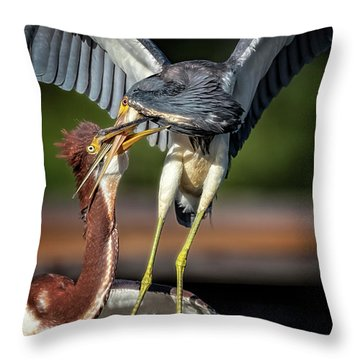 I Don't Want To Hear It Throw Pillow