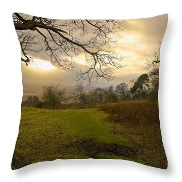 I Follow The Sunset. Throw Pillow