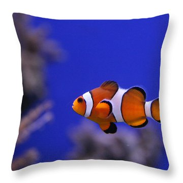 I Found Him Throw Pillow by George Jones