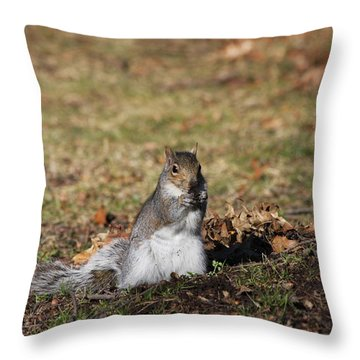 Throw Pillow featuring the photograph I Found Something To Eat... by Vadim Levin