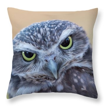 I Give A Hoot Throw Pillow
