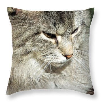I Got My Eye On You Throw Pillow
