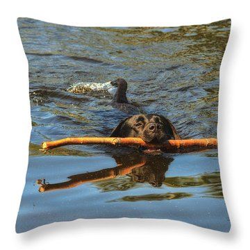 I Got This Throw Pillow by Susan Capuano