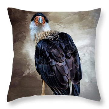 I Have Got  My Eye On You Throw Pillow by Cyndy Doty