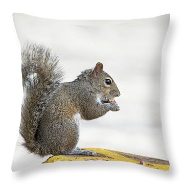 Throw Pillow featuring the photograph I Have My Nuts by Deborah Benoit
