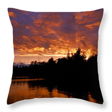 I Have Seen Rain And I Have Seen Fire Throw Pillow by Larry Ricker