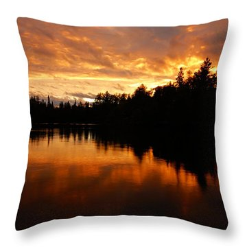I Have Seen Stormy Days That I Thought Would Never End Throw Pillow by Larry Ricker