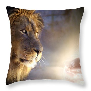 I Knew You Before You Were Born Throw Pillow by Bill Stephens