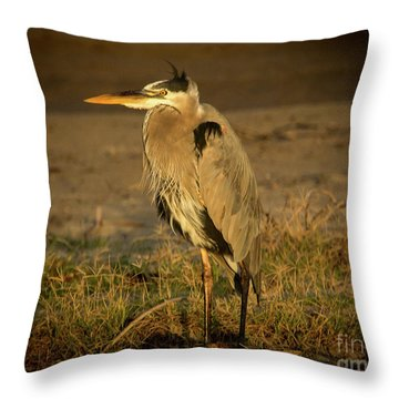 I Know They Are Coming Wildlife Art By Kaylyn Franks Throw Pillow