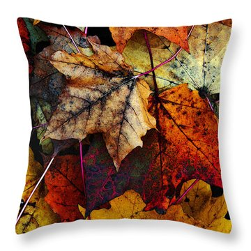 I Love Fall 2 Throw Pillow