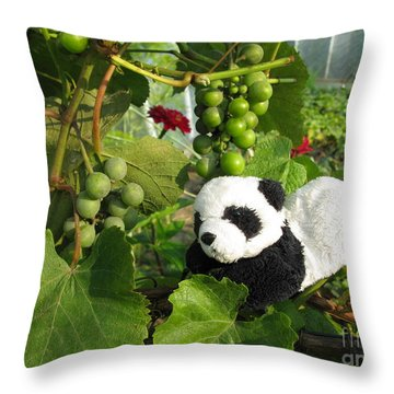 Throw Pillow featuring the photograph I Love Grapes Says The Panda by Ausra Huntington nee Paulauskaite