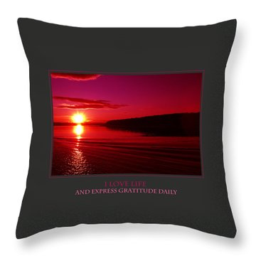 I Love Life And Express Gratitude Daily Throw Pillow by Donna Corless