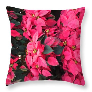 Throw Pillow featuring the photograph I Love Poinsettias by Kay Gilley