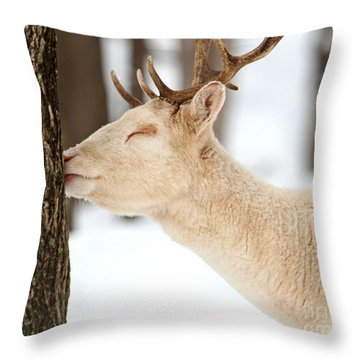 I Love This Tree Throw Pillow