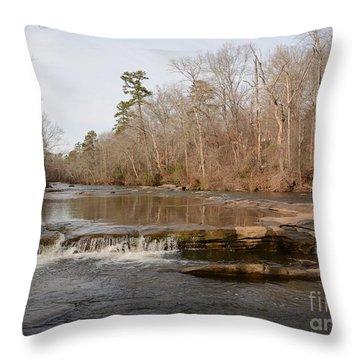 I Love To Go A Wanderin' Yellow River Park -georgia Throw Pillow