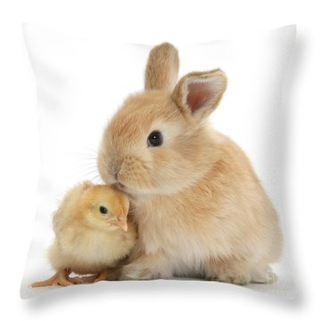 I Love To Kiss The Chicks Throw Pillow