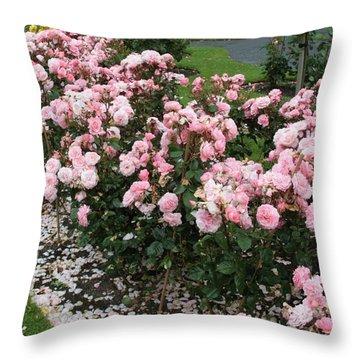 ...........i Never Promised You A Rose Garden Throw Pillow by Martina Fagan