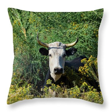 I Picked These For Moo Throw Pillow