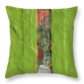 The Letter I Throw Pillow