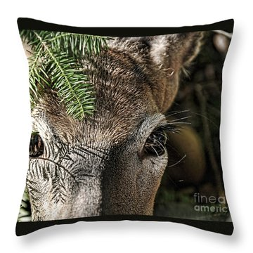 I See You Ginkelmier Inspired Deer Throw Pillow