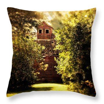 Throw Pillow featuring the photograph I See You by Julie Hamilton