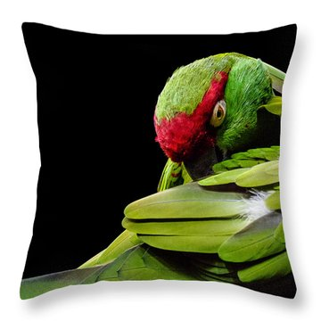 I See You Throw Pillow by Rob Amend