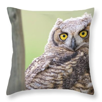 I See You Throw Pillow by Scott Warner