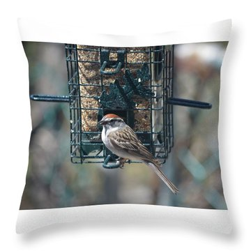I Sing For My Supper Throw Pillow