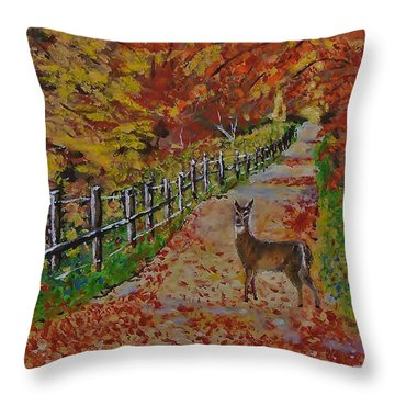 I Think I'm Lost Throw Pillow