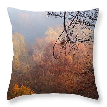I Thought Of You Throw Pillow