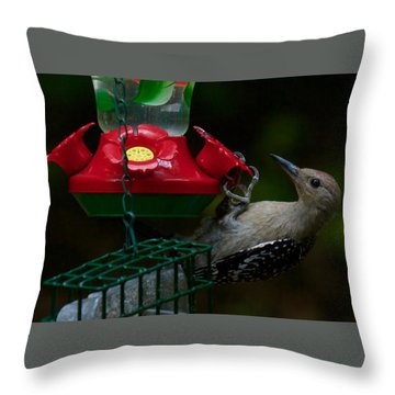 Throw Pillow featuring the photograph I Want To Be A Hummingbird by Robert L Jackson