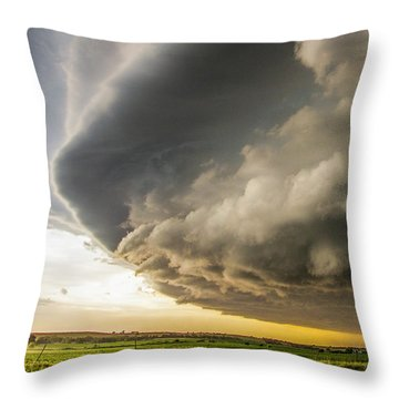 I Was Not Even Going To Chase This Day 021 Throw Pillow