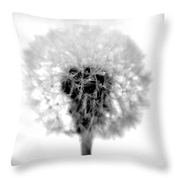 I Wish In Black And White Throw Pillow by Valerie Fuqua