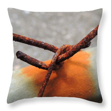 I Wish That I Could Fly Throw Pillow